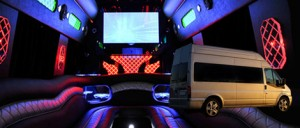 16 seater partybus